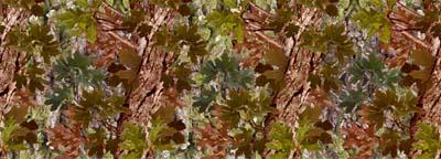 Custom Camouflage Vinyl Lettering Styles